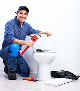 toilet repair burleson tx
